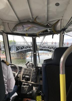 ocean bus 2